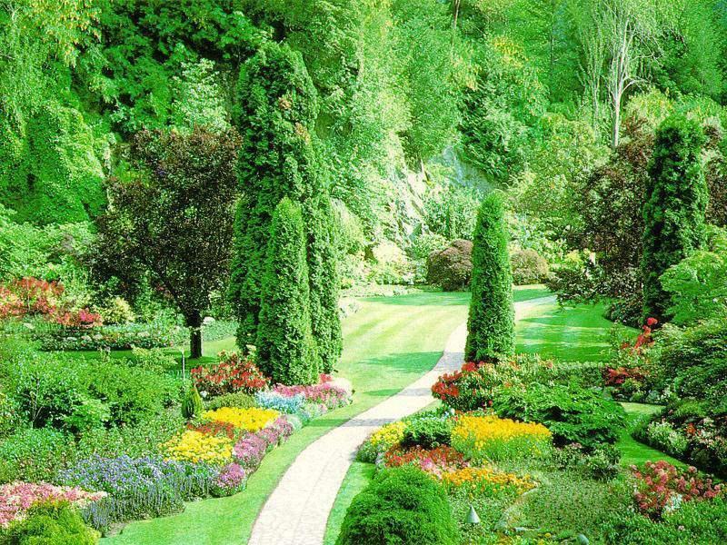 son jardin grâce à un paysagiste