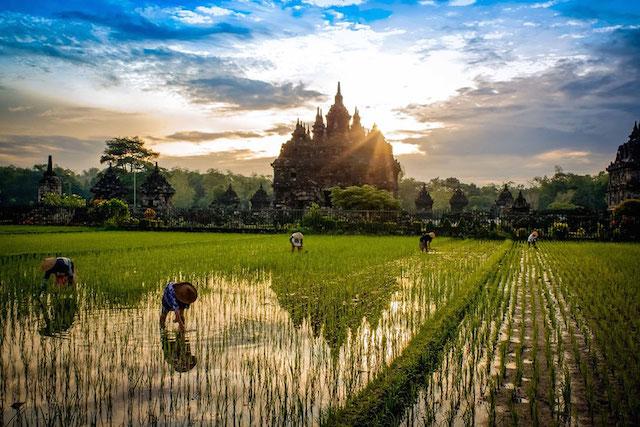 Plaosan Temple, Yogyakarta, Indonésie