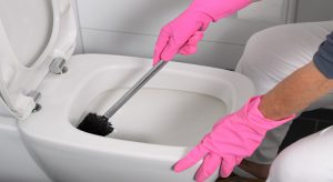 Comment désinfecter les toilettes naturellement ?