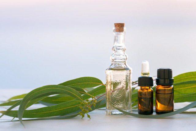 mélange à base d'huile essentielle d'eucalyptus