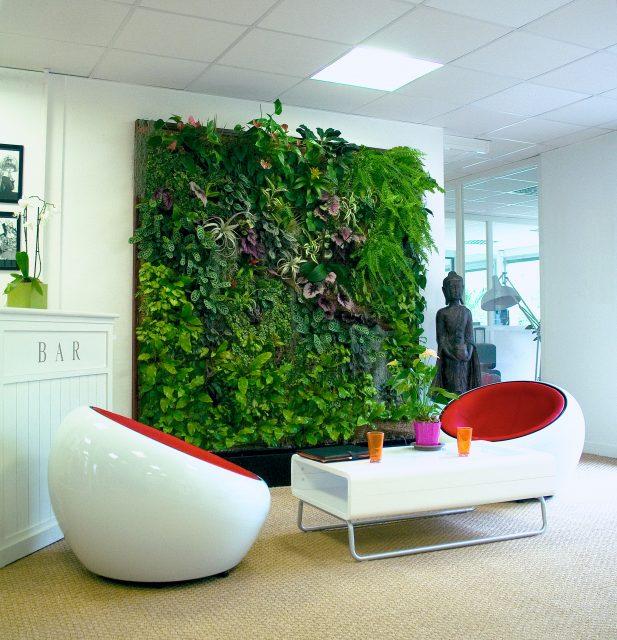 canapé mur végétal