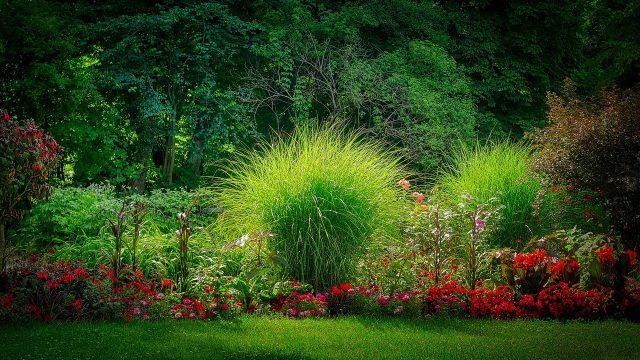 4 appareils très utiles pour entretenir le jardin comme un pro